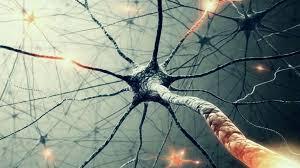 Що треба знати про розсіяний склероз: пояснює експерт